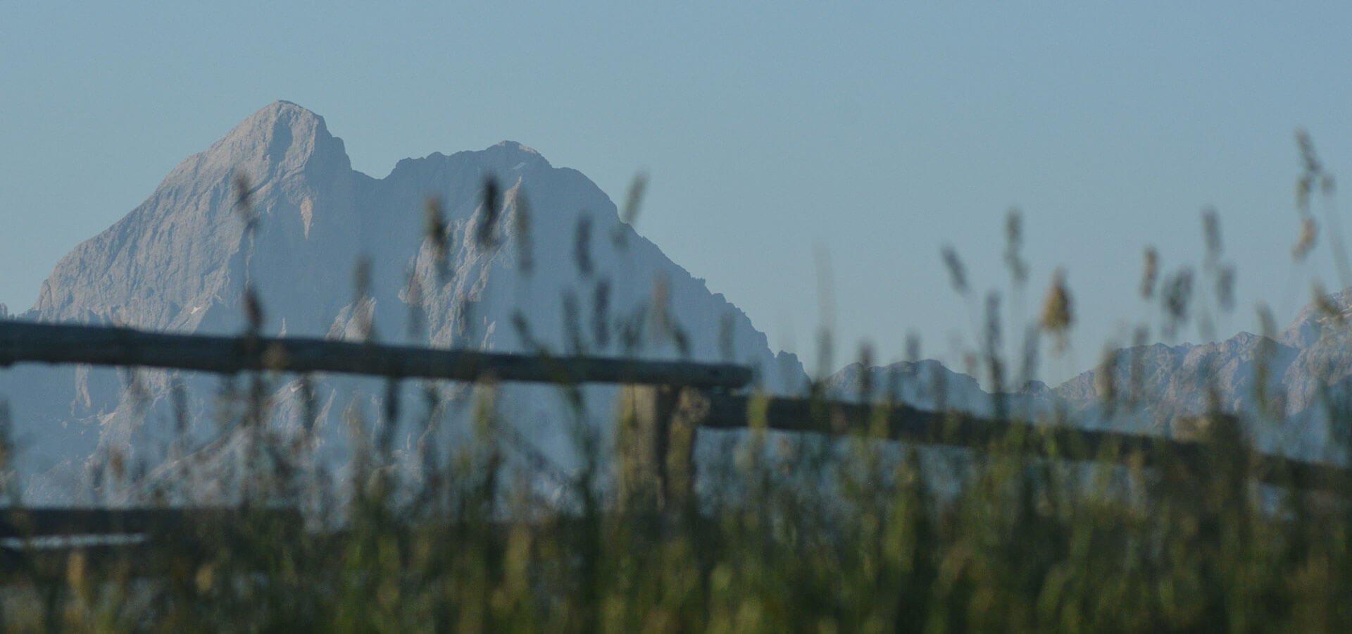 Risveglio all'Alpe