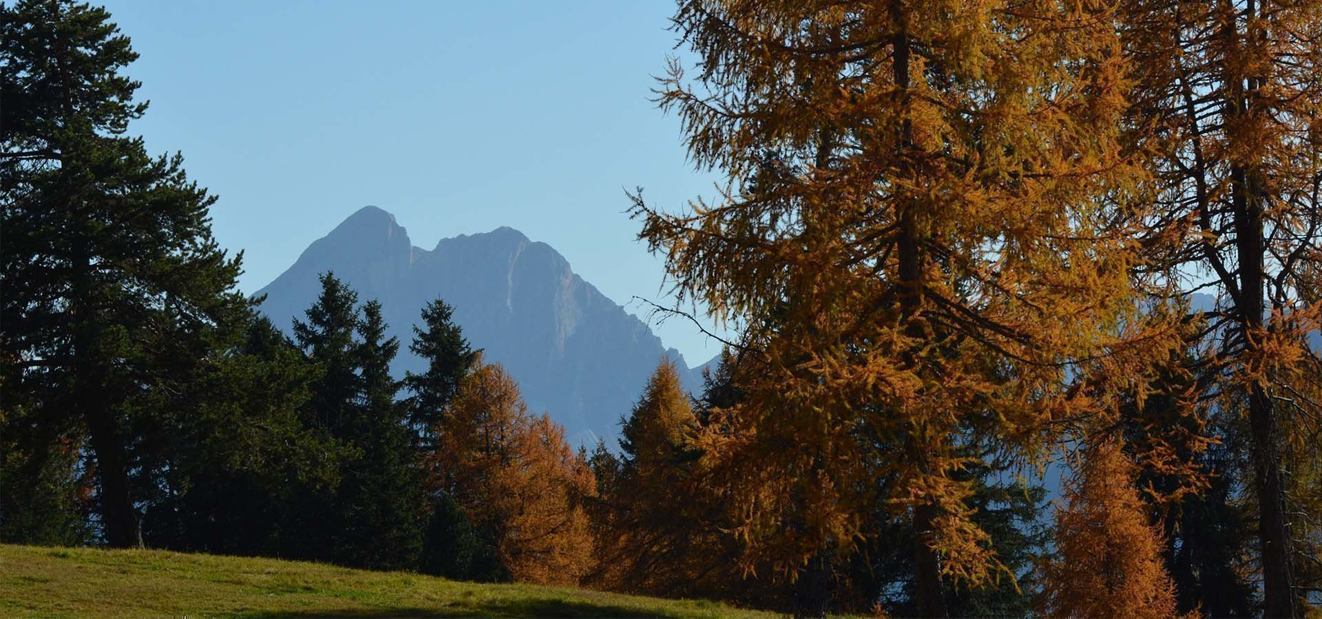 Urlaub in Südtirol - Auf der Rodenecker Alm
